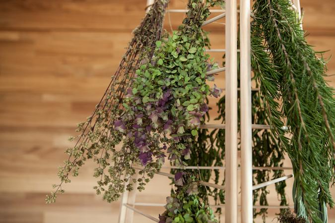 herbs, herb rack