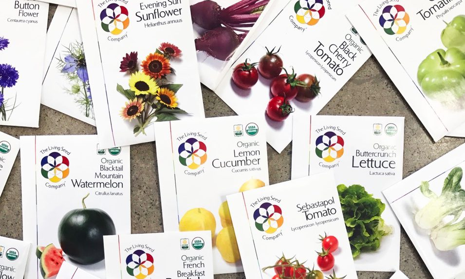 sustainable seeds