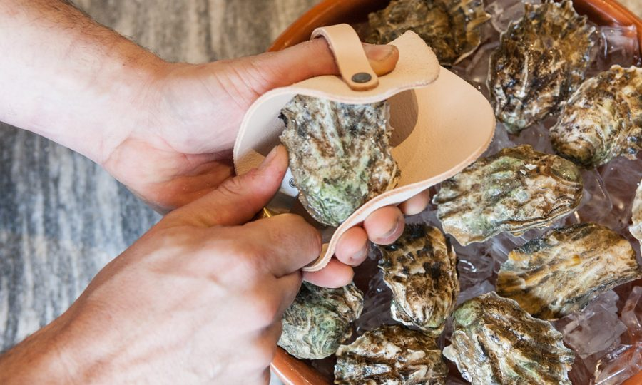 shuck oyster